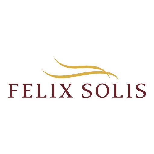 Logo Felix Solis